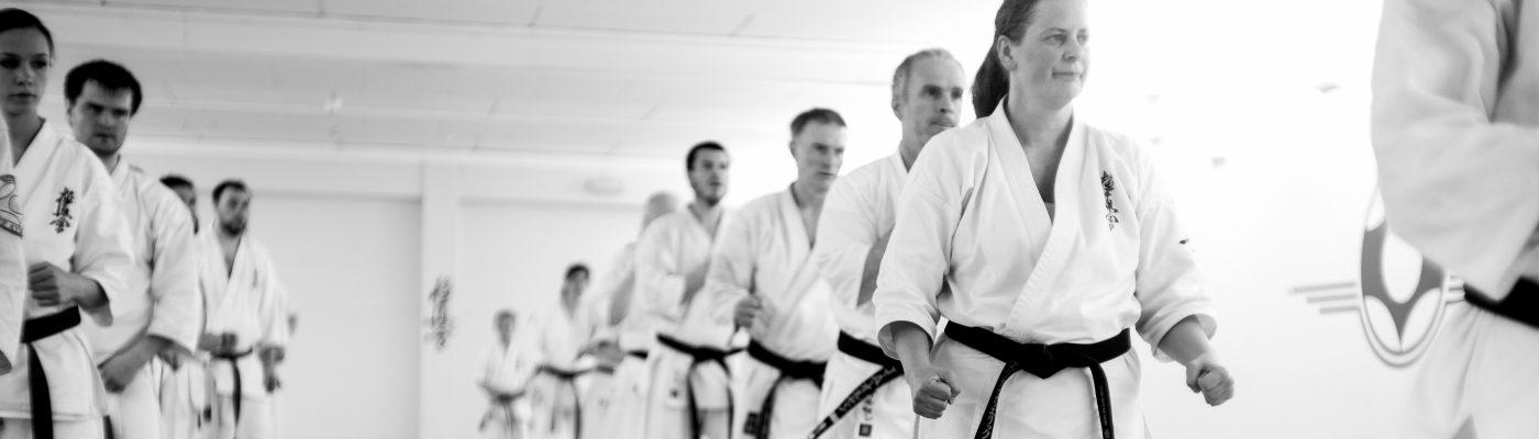 Tromsø karateklubb